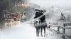[오늘날씨] 올 겨울 가장 추운 날씨... 강원 적설량 30cm 이상 많은 눈