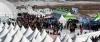 2년 연속 무산된 아픔을 딛고 3년 만에 다시 화려한 막을 올린 제17회 인제 빙어축제 이틀째인 22일 많은 관광객이 축제장을 찾아와 겨울 낭만을 즐기고 있다. 2017.1.22